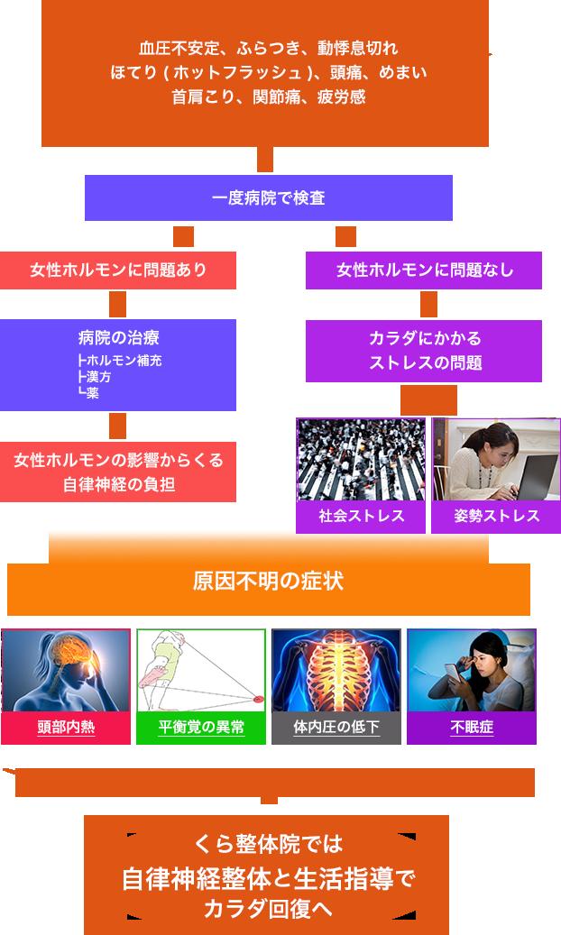 血圧不安定、ふらつき、動悸息切れ、ほてり(ホットフラッシュ)、頭痛、めまい、首肩こり、関節痛、疲労感